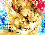 Картина по номерам 40*50 см, Львы в красках