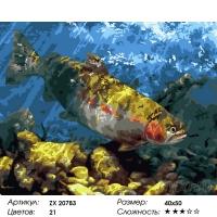 Картина по номерам 40*50 см, Огромная рыба