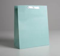 Пакет подарочный «Мятный», 26 х 32 х 12  см   5047671
