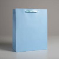 Пакет подарочный «Голубой», 26 х 32 х 12  см   5047668