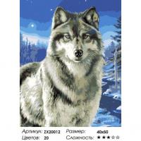 Картина по номерам 40*50 см, Волк в заполярье