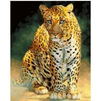 Картина по номерам 40*50 см, Южноаравийский леопард