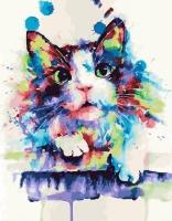 Картина по номерам 40*50 см,  Радужный котик