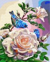 Картина по номерам 40*50 см,  Птицы на розах