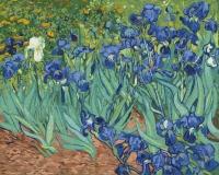 Картина по номерам 40*50 см,  Ирисы (худ. Ван Гог)