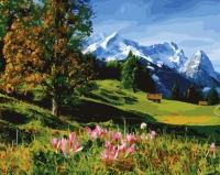 Картина по номерам 40*50 см,  Красная поляна