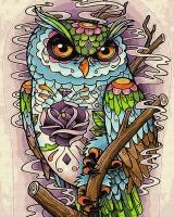 Картина по номерам 40*50 см,  Взгляд совы