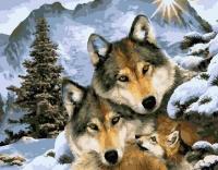 Картина по номерам 40*50 см, Волчьи узы