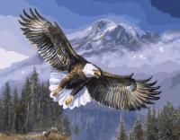 Картина по номерам 40*50 см, Полет орла