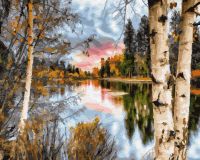 Картина по номерам 40*50 см, Осенние березы