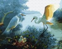 Картина по номерам 40*50 см, Цапли в гнезде