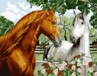 Картина по номерам 40*50 см, Пара лошадей
