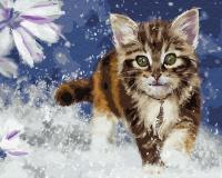 Картина по номерам 40*50 см, Очаровательный котенок