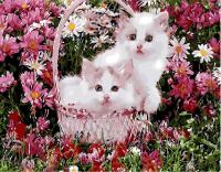 Картина по номерам 40*50 см, Котята в корзинке