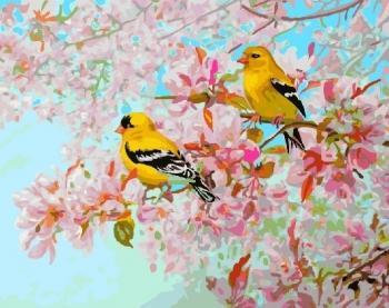 Картина по номерам 40*50 см, Желтые птички на ветке