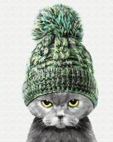 Картина по номерам 40*50 см, Кот в теплой шапке